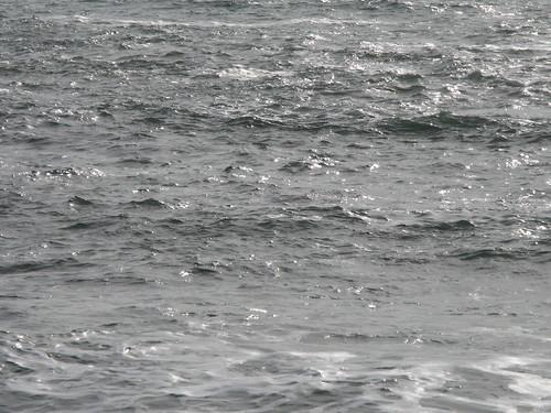 Sonoma Coast SP