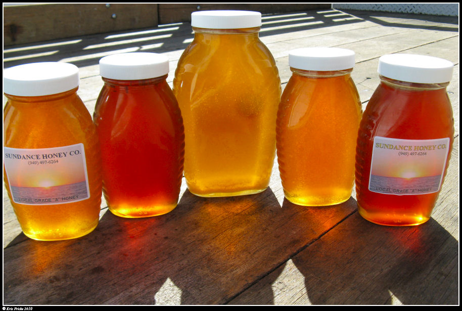 Several jars of honey lit from the back