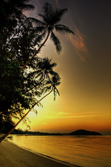 60 Seconds To Darkness (Andy Bracey -) Tags: sunset sea beach palms thailand golden asia southeastasia sundown kohsamui hdr blendedexposure goldenpalms bracey 60seconds sandinmyshoes mywinners platinumphoto superaplus aplusphoto theunforgettablepictures andybracey magicunicornverybest lipanoibeach theperfectendtoanotherday 60secondstodarkness
