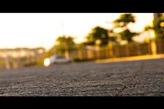 Morning Light (michaeljosh) Tags: morninglight parkinglot bokeh depthoffield asphalt goldenlight nikkor50mmf14d ineedavacation nikond90 uptechnohub michaeljosh