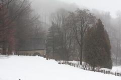 Kapelle im Nebel (Esme_Wetterwachs) Tags: nebel stclemens baddriburg marienkapelle hoppenberg