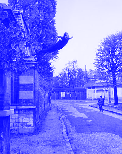 Leap Into the Void-Winged Victory_Yves Klein