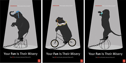 Animal Anti-Cruelty Campaign. A series of illustrated posters that advocate