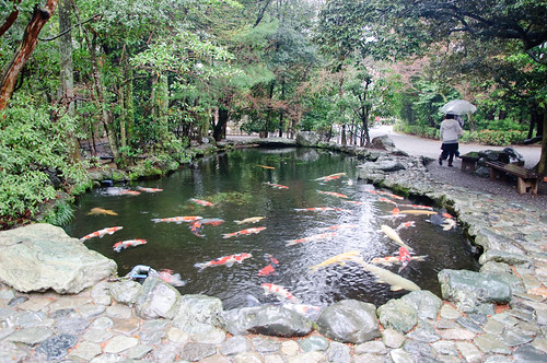 Koi pond at Naiku, Isejingu