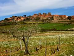 Castelo Rodrigo (Luicabe) Tags: castle portugal interior castelo luis chateau rodrigo castillo norte guarda cabello beira
