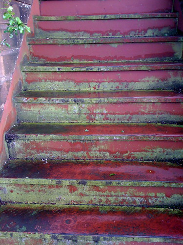 Steps in the Outer Richmond