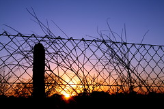 Sunsets and Fences.... (Jen R {Sparrow's Heart Photography}) Tags: sunset flare fencefriday texassunsetsandfences