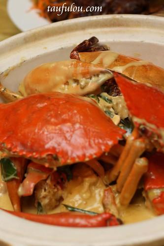 King Crab (18)