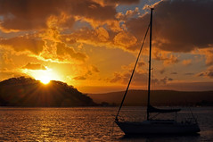 Sail Away (Atilla2008) Tags: sunset beautiful silhouette wow nikon australia nsw sail serene rays centralcoast sailaway yachting d90 superaplus aplusphoto mygearandmepremium mygearandmebronze mygearandmesilver mygearandmegold mygearandmeplatinum mygearandmediamond