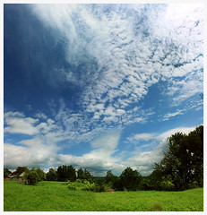 084 (AnkhaiStenn) Tags: road wood blue roof summer sky cloud white house plant tree green home field forest way landscape grey weed highway russia ukraine land asphalt russian ukrainian steppe pushkari widegrass