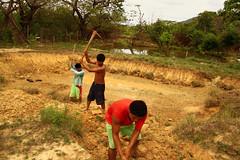 Cavando (arcoverdeimagens) Tags: rural professor alunos aula tanque viveiro construcao picareta cavar piscicultura surumu escavacao