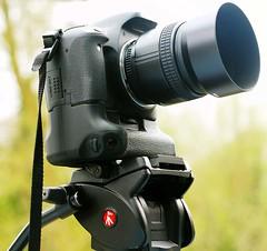 Canon 550D Nikon 85mm f1.8D lens