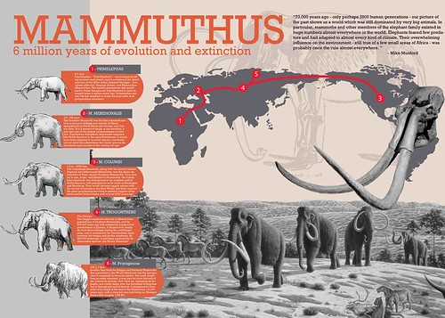 Mammuthus Poster