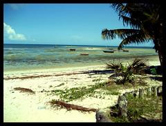 Strand von Bagamoyo