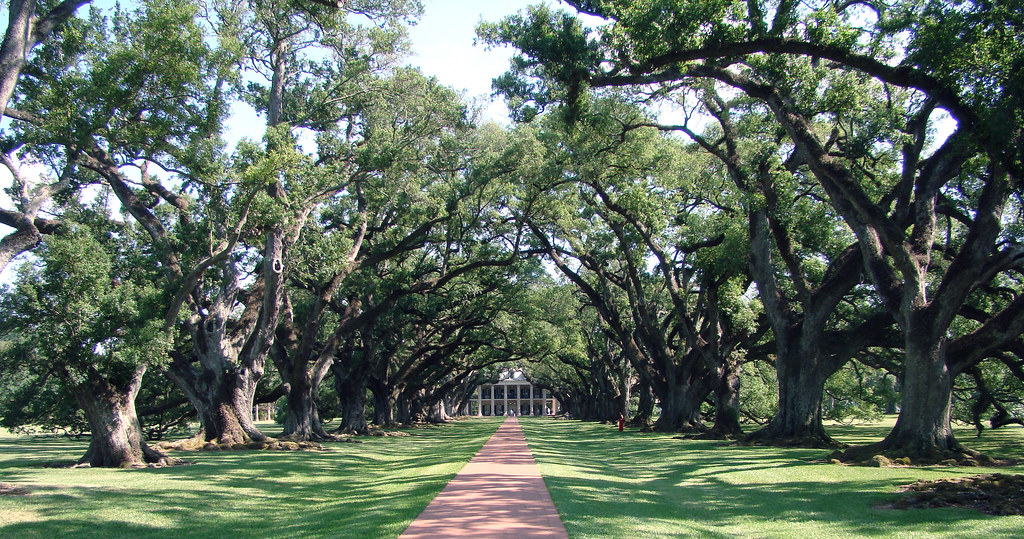 20100506_0742 Oak Alley Plantation