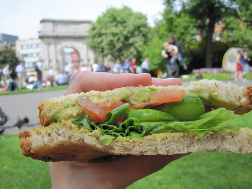 Picnic at St. Stephen's Green Park -  Homemade Vegan Sandwich