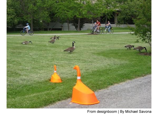 goose cones
