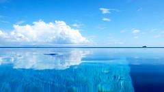 Jehunuhura Island (nicadlr) Tags: ocean travel vacation male beach water coral asian island hotel islands w great north indianocean may best retreat beaches blueskies hotels islandnation maldives ever spa ari atoll islets housereef mal besthotels whotels hotweather majlis starwood maldiveislands atolls coralislands republicofmaldives maldivesresorts fesduisland malatoll northariatoll greatestbeaches wretreatspamaldives twentysixatolls laccadivesea mahaldeeb  wmaldivesretreatspa starwoodcapital maldivianatolls awayspa whateverwheneverservice worldsgreatesthotel serviceamazing snorkelinghouse amazingreef