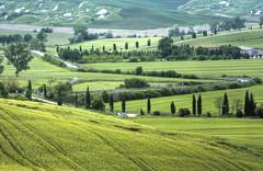 Lunga è la strada verso casa - Long is the way towards home (Tuscany, Italy)