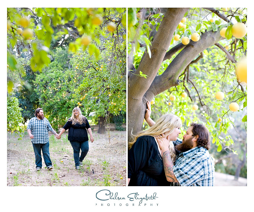 Los angeles orange orchard engagement session