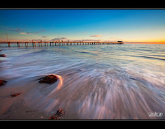 Henley Beach Motion (Dale Allman) Tags: ocean sunset sky cloud seascape motion seaweed nature water clouds seashells canon sand waves jetty shell australia wideangle explore adelaide southaustralia frontpage 1740 henleybeach henleybeachjetty henleyjetty canon5dmkii 5dmkii daleallman