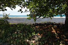 baudchon-baluchon-costa-rica-cahuita-7