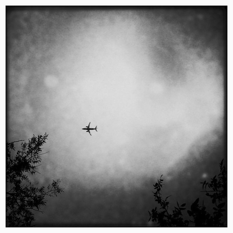 iPhoneography: A Small Bird in a Big Sky