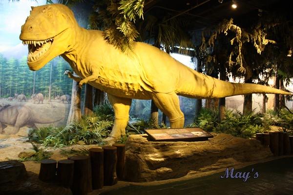 990522台北動物園 084