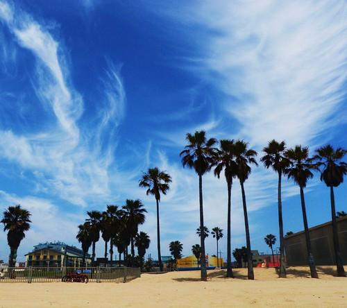 Random Venice Beach Picture from Daniel S