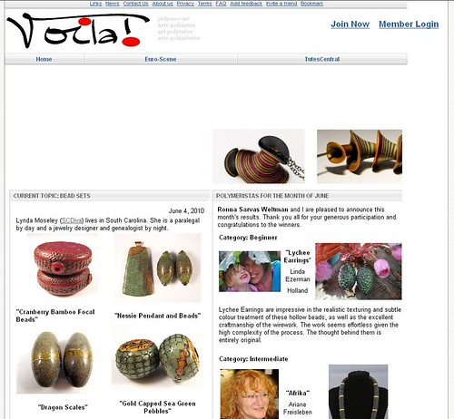 Voila Website Feature June 4, 2010