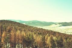 (-) Tags: nature landscape nikon d90