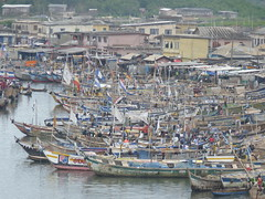 Elmina Photo