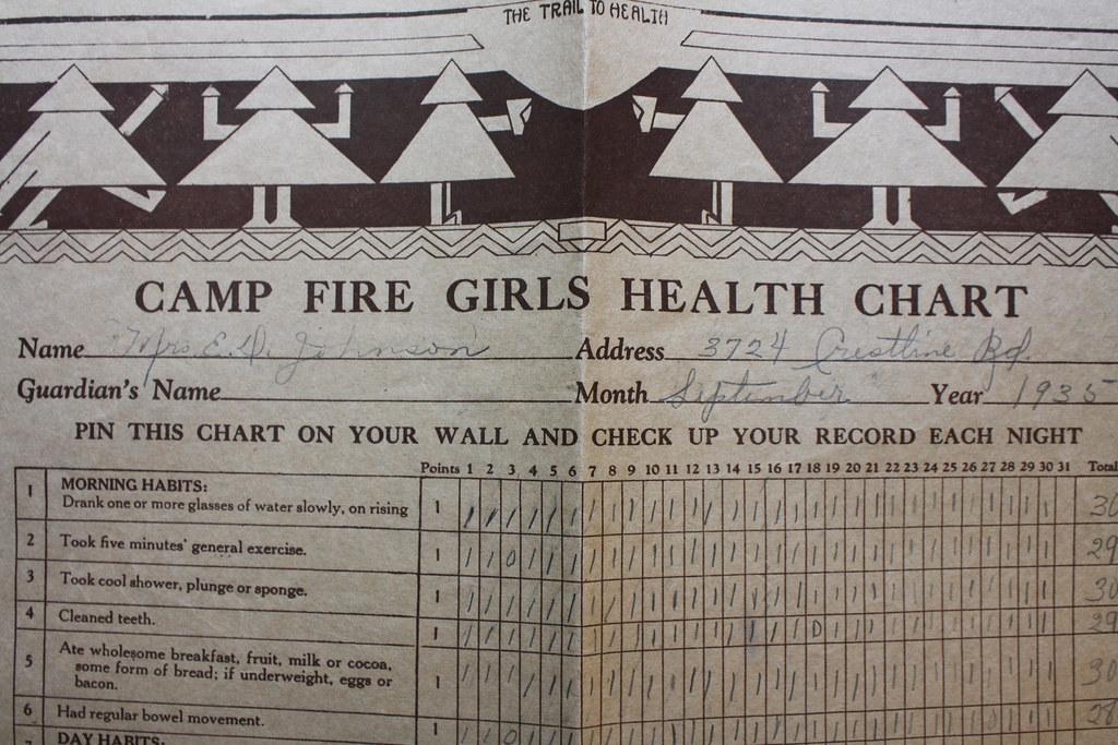campfire health chart