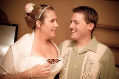 Mr. & Mrs. Josh and Rebecca Martin [528] (brianjmatis) Tags: wedding butterfly groom bride married martin turtle husband josh monarch photoaday wife project365