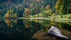 When Time Stands Still (andywon) Tags: autumn trees lake fall water colors rock reflections germany mirror shoreline schwarzwald blackforest feldberg badenwrttemberg feldsee explored gettyimagesgermanyq1
