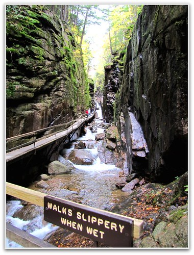 Beginning of the Flume Gorge