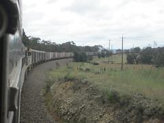 SK82 Failed at 208.500 kms on up main at Towrang (Rickoo5) Tags: cars ak gw marulan 2210 artc rp3 towrang railcorp