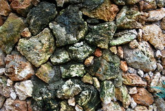 Rock Wall (mynameisharsha) Tags: india green texture wet rock stone moss nikon sandstone bangalore granite algae karnataka mysore d60 maddur chitravana 1855mmf3556gvr mynameisharsha