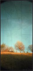 autumn (mypho.de) Tags: autumn trees color tree rollei forest mediumformat landscape holga pinhole noise lochkamera uwa wideangel c41 mittelformat 6x12 f135 120° ultrawideangel holga120wpc digibasecn200pro toycamvignette