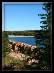 Acadia (bill.lepere) Tags: pinetree maine acadia mountdesertisland sandybeach rockycoast novaphoto blepere