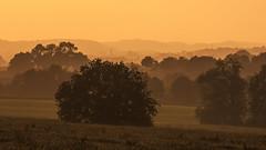 After rain comes sunshine! (Eric Dankbaar) Tags: camping melleschet sunset vijlen zonsondergang