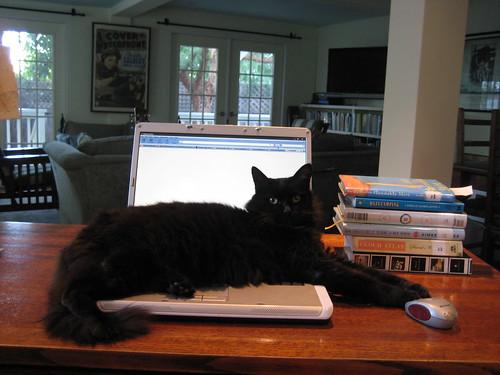 Patsy says, no blogging.