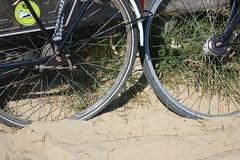Texel - praia