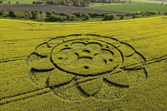 Crop-circles-A-crop-circl-009