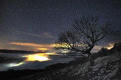 (jonlp) Tags: landscape nightshot navarre navarra nafarroa gaua aralar paisajea