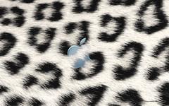 Snow Leopard Mac OS X Desktop Wallpaper_1920x1...