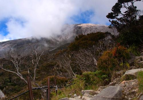 Mount Kinabalu 05