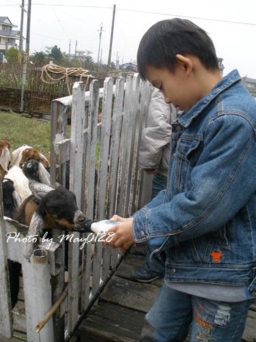 2009 12 20_46可達羊場.jpg