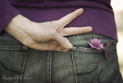 Peace...{6/365} (ImagesByClaire) Tags: love daisies 50mm peace purple jeans behind peacesign project365 florabellatextures florabellaactions poweroflovevsloveofpower