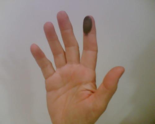 Anat Hoffman fingerprinted
